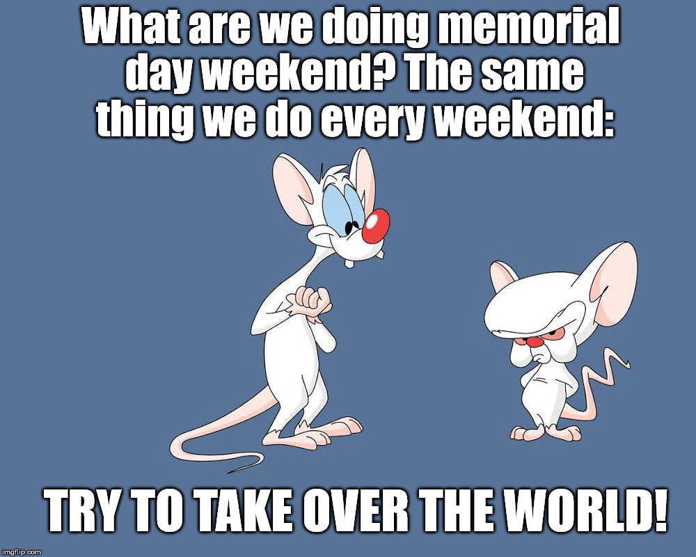 Memorial Day Funny Pictures