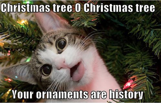 Christmas Meme 2018