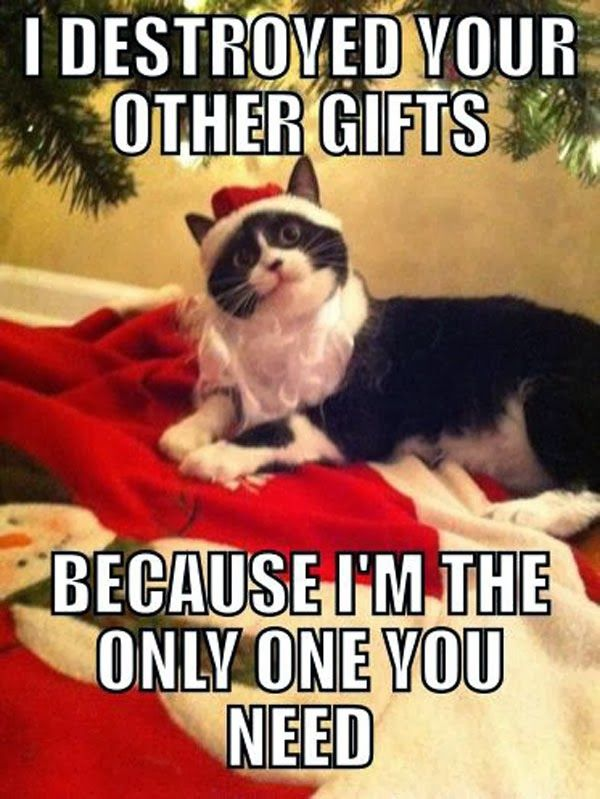 Merry Christmas 2018 Meme